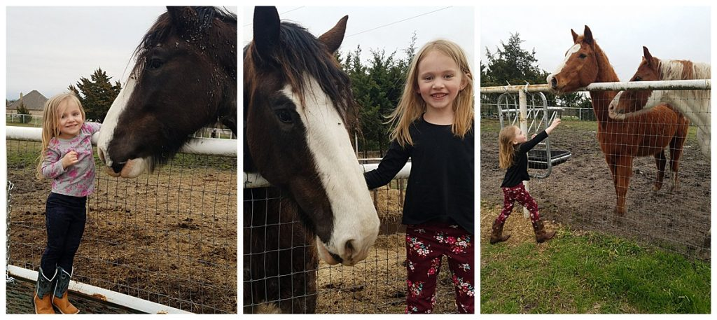 Lexie and Kylie with horses at Lakeland RV Ranch