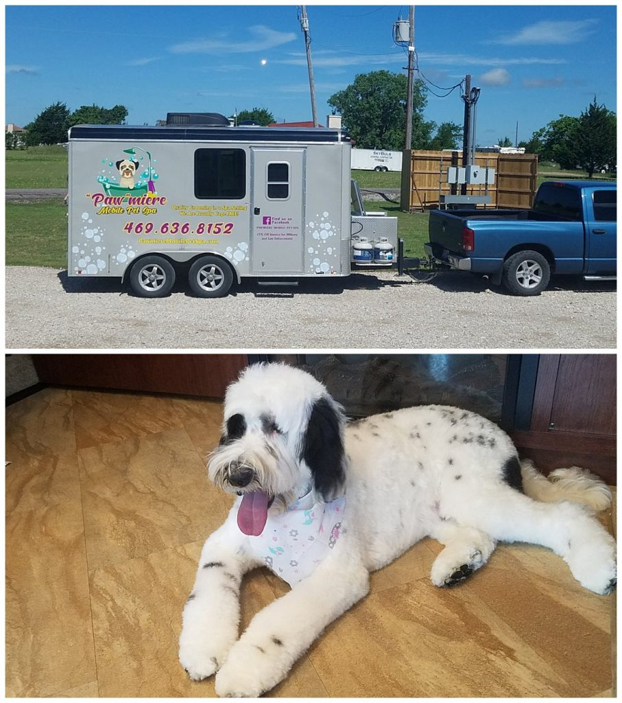 Pawmiere a local mobile pet spa