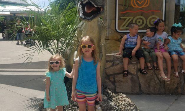 A trip to the Dallas Zoo