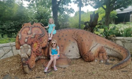 A trip to the Dallas Zoo