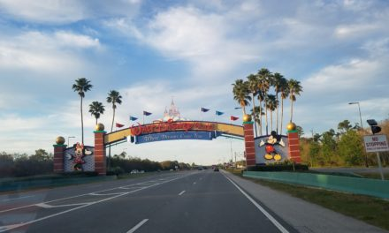 A dream come true at Disney World and RV Full-time tips