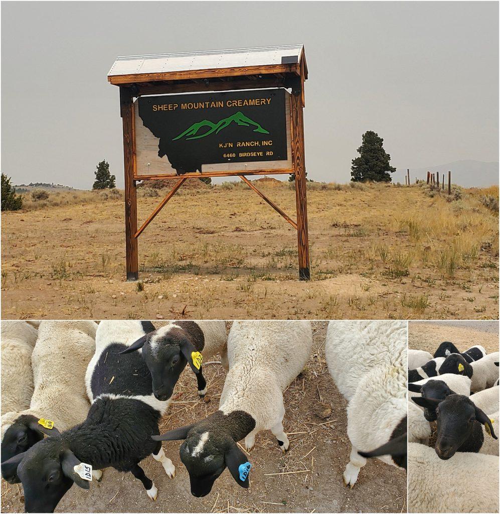 Sheep Mountain Creamery in Helena Montana